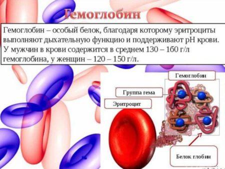 Влияет ли высокий гемоглобин на потенцию