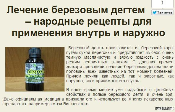 berezoviy-degot-i-lechenie-vlagalisha
