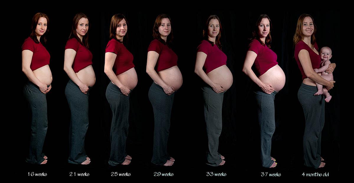 Беременность от 24 до 30 недель