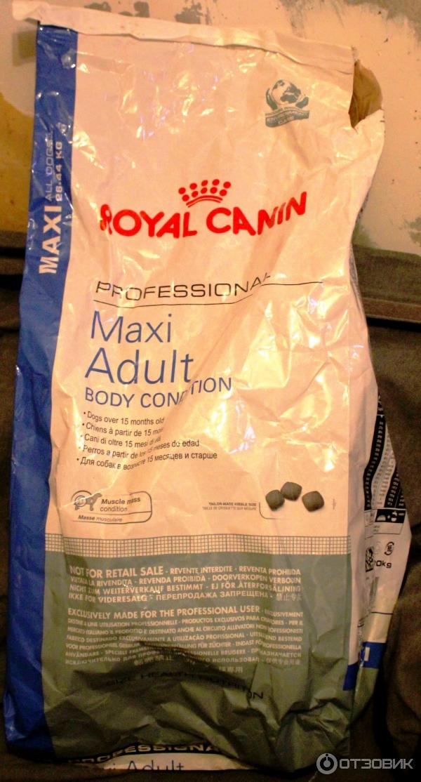 Корм royal canin выставка
