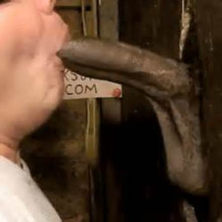 Anal sex prolapse technique