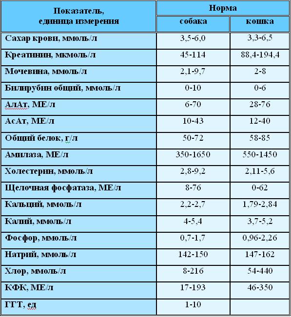 furunkuli-kakie-analizi-nado-sdavat