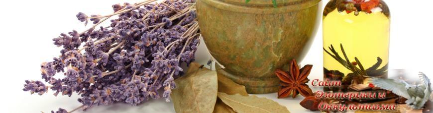 Зверобой Применение, рецепты Лечение - Блог