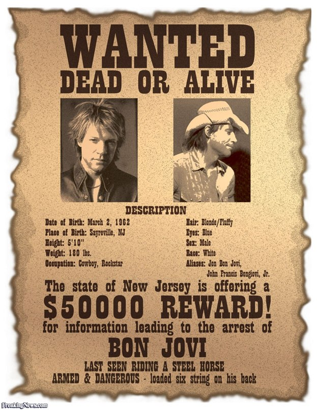 Watch Wanted: Dead or Alive Movie Online on MoviesTo