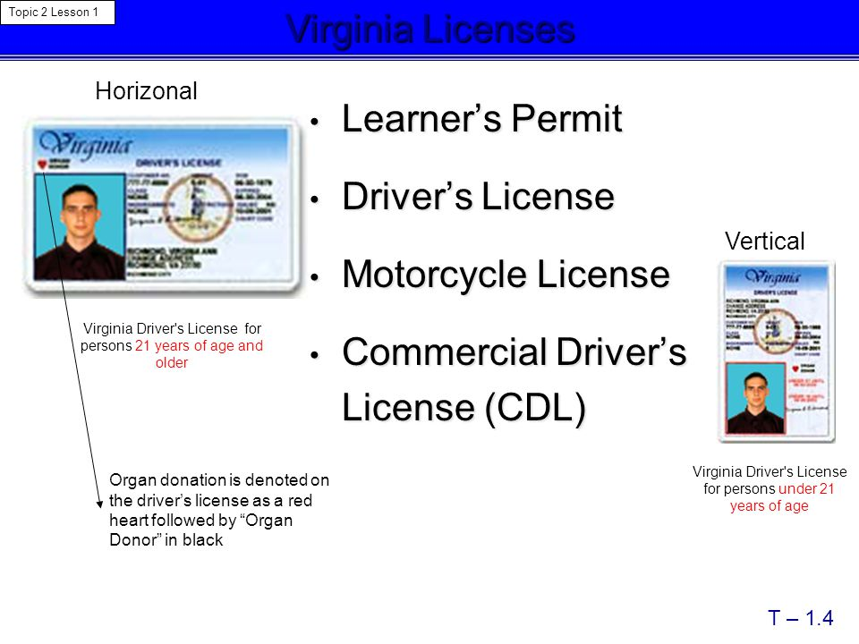 Sc Teaching License Requirements