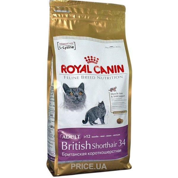 British корм royal canin