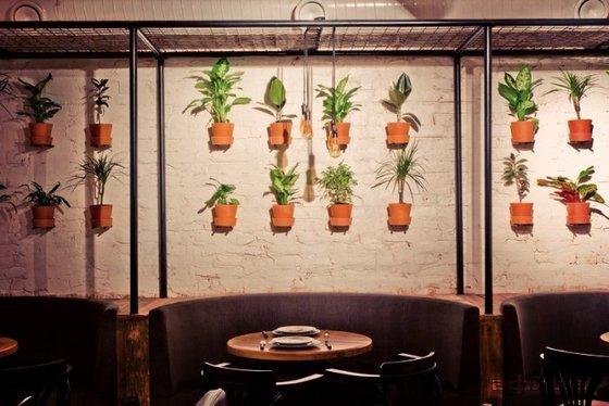 Ресторан City Café & Coffee Shop №119 - фотография 7