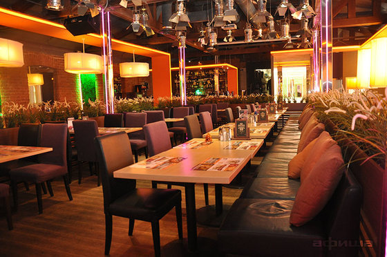 Ресторан Три оленя на Московском - фотография 4