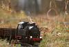 Игра в железную  дорогу