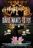 Дэвид хочет летать (David Wants to Fly)