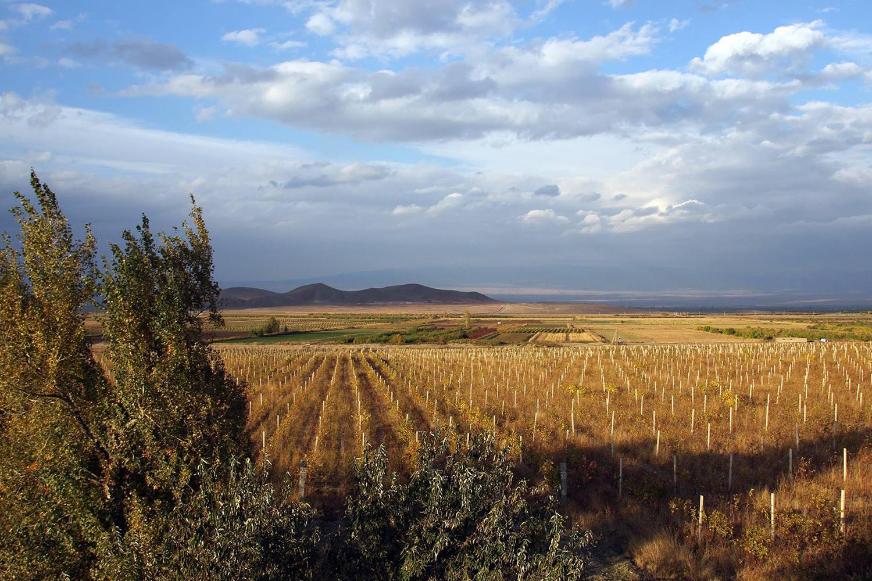 sletaty-v-erevan-kak-v-derevnu-k-babuske--afisa-daily-opublikovala-statyu-o-gastronomiceskom-turizme-v-armenii