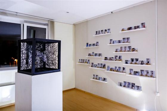 Фото выставочный зал Сколково
