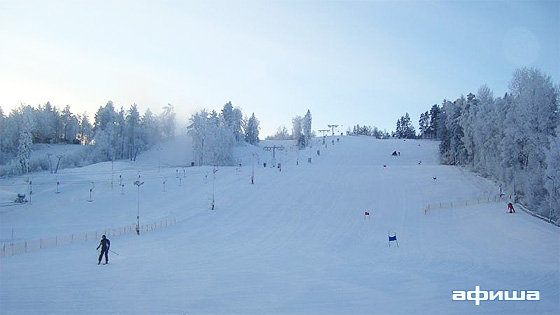 Фото снежный