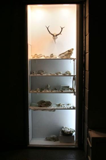 Фото галерея White