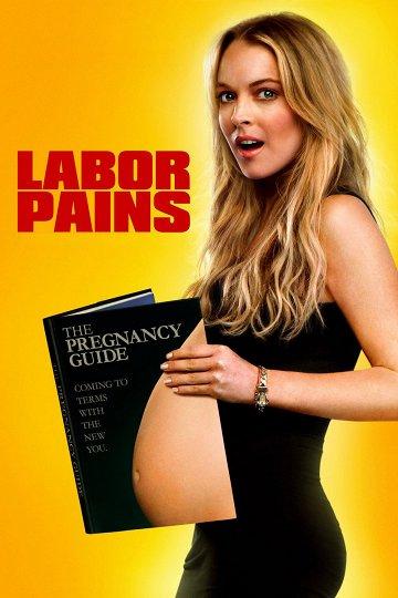 Постер Временно беременна