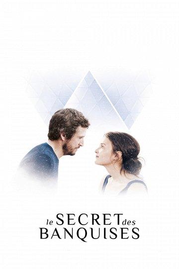 Постер Любовь и пингвины