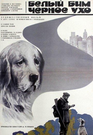 Постер Белый Бим Черное ухо