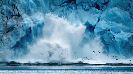Океан. Экология. Будущее
