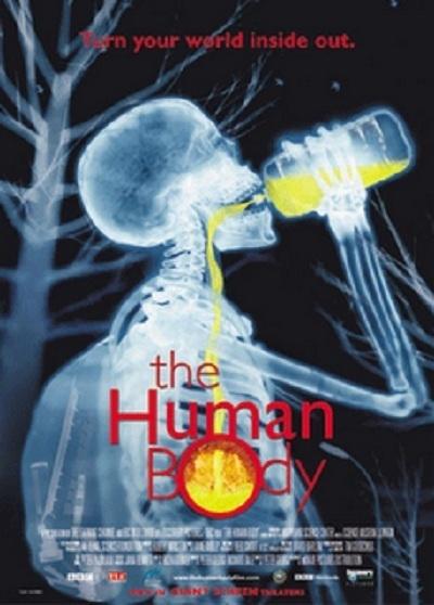 Человеческое тело (The Human Body)