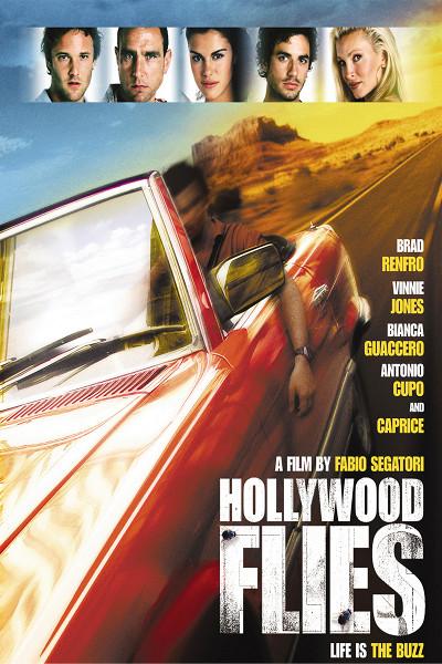 Налетчики из Голливуда (Hollywood Flies)