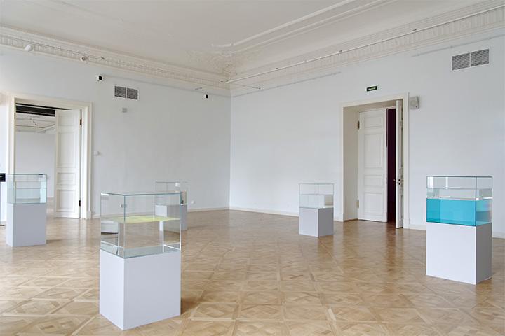 Анна Вероника Янсенс. Скульптуры-аквариумы, 2005-2010