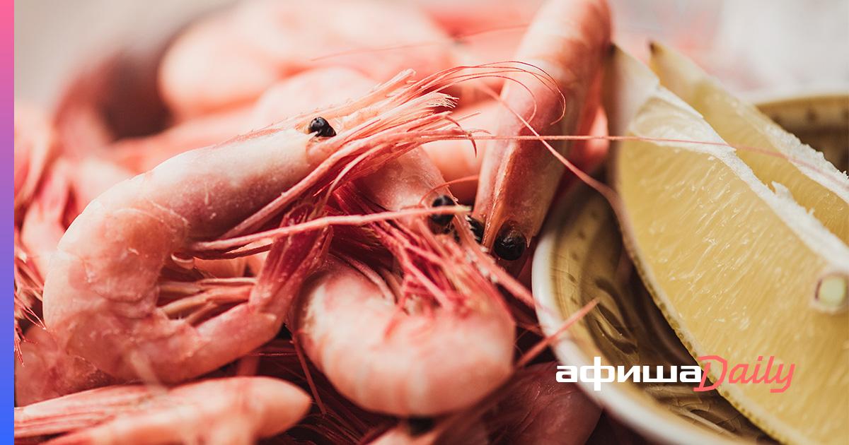 Описание видов креветок. Какие из них морские или речные пресноводные лучше подходят для домашнего содержания
