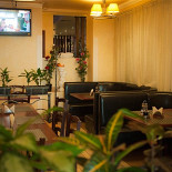 Ресторан Rossini - фотография 2
