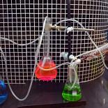 Ресторан Bubbleology - фотография 2 - Фирменное оформление в стиле лаборатории Сумасшедшего профессора;)