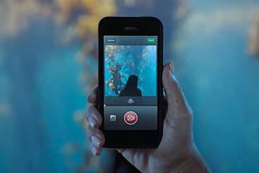 Instagram, Сlubture, «Яндекс.Браузер», «Весь Толстой в один клик», камера для котов и не только