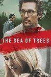 Море деревьев / The Sea of Trees