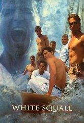 Постер Белый шквал