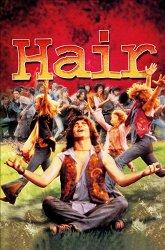 Постер Волосы