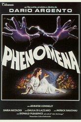 Постер Феномен