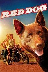 Постер Рыжий пес