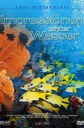 Постер Коралловый рай
