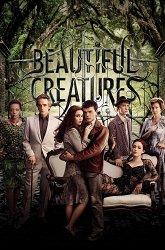 Постер Прекрасные создания