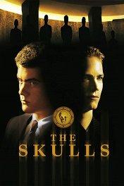 Черепа / The Skulls