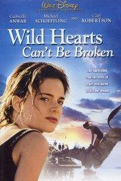 Храбрые не отчаиваются / Wild Hearts Can't Be Broken