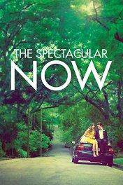 Захватывающее время / The Spectacular Now