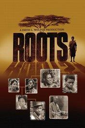 Корни / Roots