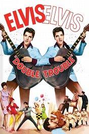 Двойные неприятности / Double Trouble