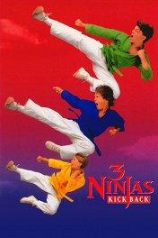 Три ниндзя наносят ответный удар / 3 Ninjas Kick Back