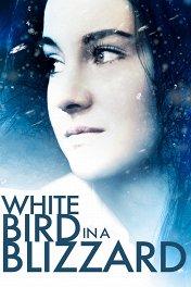 Белая птица в метели / White Bird in a Blizzard