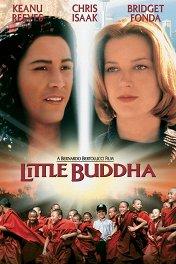 Маленький Будда / Little Buddha
