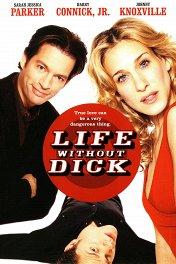 Романтическое преступление / Life Without Dick