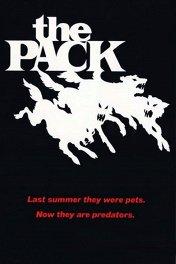 Стая / The Pack