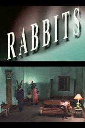 Кролики / Rabbits