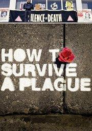 Постер Как пережить чуму