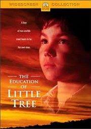 Постер Приключения маленького индейца