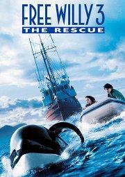 Постер Освободите Вилли-3: Спасение